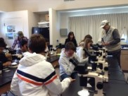 Working with students in the lab