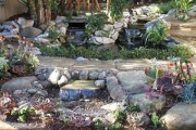 South  Bay Water-Wise Garden Tour