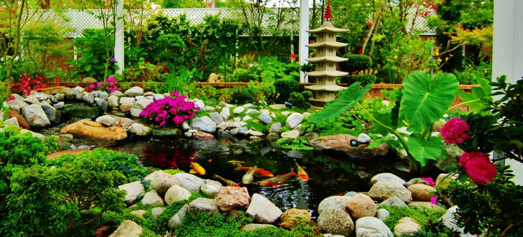 Ponds landscaping manhattan beach enviroscape la for Koi pond maker
