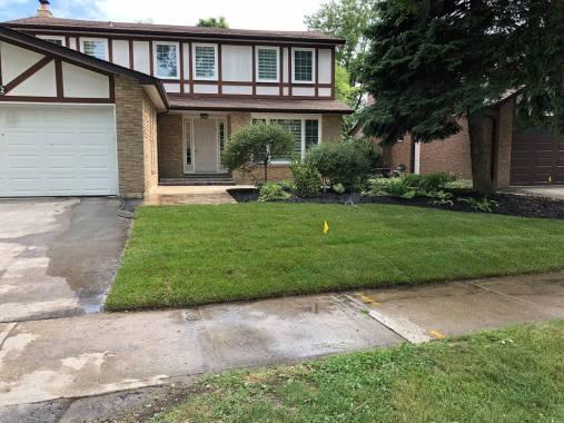 front yard overhaul