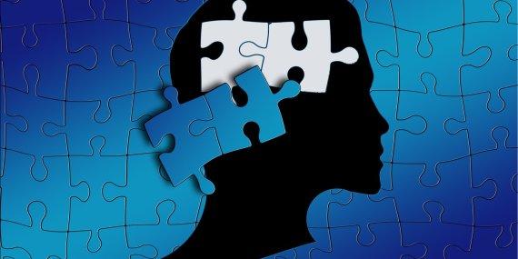 puzzle in the brain