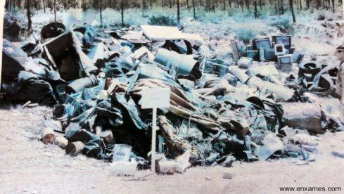 Recolha de Lixo das Florestas