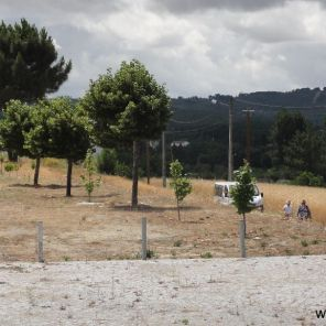 Caminhada_201406_DSC01124