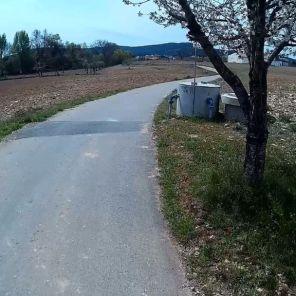 passeio-bicicleta-enxames-6