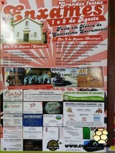 Enxames-Festa-SS-2015