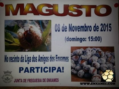 magusto-lae-2015