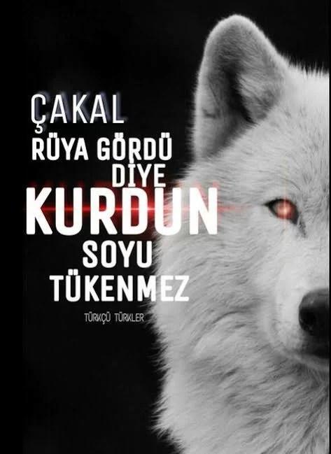 akal rüya gördü diye Kurdun soyu tükenmez - Ülkücü İle İlgili Resimli Sözler - Ülkücü Sözleri, Milliyetçilik, Türk Sözleri, resimli-sozler, populer-sozler, guzel-mesajlar, anlamli-sozler
