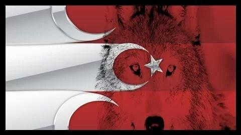 Ayyıldızlı Bozkurt - Ülkücü İle İlgili Resimli Sözler - Ülkücü Sözleri, Milliyetçilik, Türk Sözleri, resimli-sozler, populer-sozler, guzel-mesajlar, anlamli-sozler
