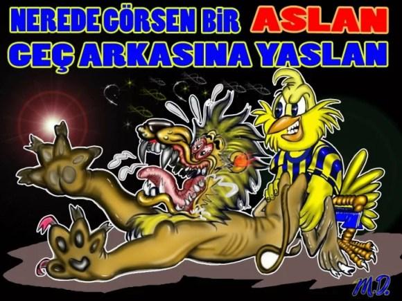 Nerde görsen bir aslan geç arkasına yaslan - Fenerbahçe İle İlgili Resimli Sözler - Fenerbahçe Sözleri Ve Kareografileri, resimli-sozler