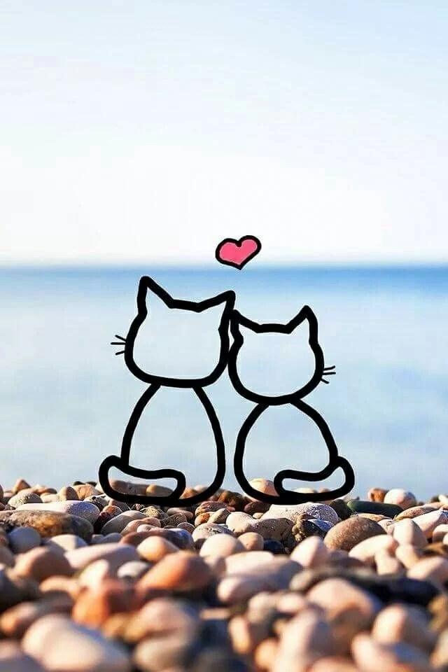 Whatsapp Durum Mesajları 31 - Hayvanlar İle İlgili Resimli Sözler - Hayvanlar İle İlgili Sözler, resimli-sozler