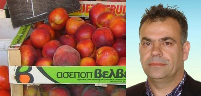 Φ. Αλεξόπουλος: «Η άσκηση κοινωνικής πολιτικής πρέπει να είναι σιωπηλή…»