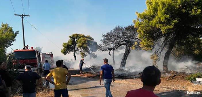 Φωτιά σε χώρο αποκομιδής σκουπιδιών στη Ραφήνα – Τέθηκε υπό έλεγχο