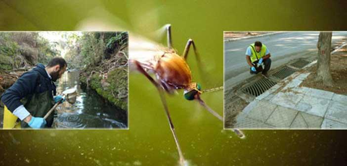 Ξεκίνησαν οι δράσεις κουνουποκτονίας στον Δήμο Φιλοθέης – Ψυχικού