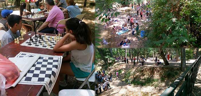 Δεκάδες δραστηριότητες κάτω από τα δένδρα της Ρεματιάς Χαλανδρίου