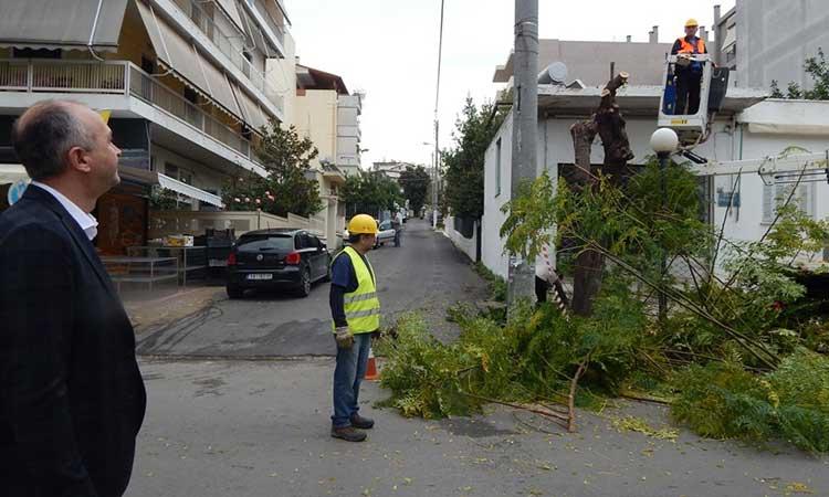 Πραγματοποιήθηκε η δράση «Καθαρές Γειτονιές» στην οδό Πευκών Δήμου Μεταμόρφωσης