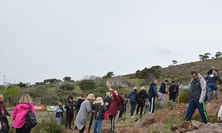 Πλήθος εθελοντών αγκάλιασαν την 4η αναδάσωση του ΣΠΑΠ στην Νταού Πεντέλης