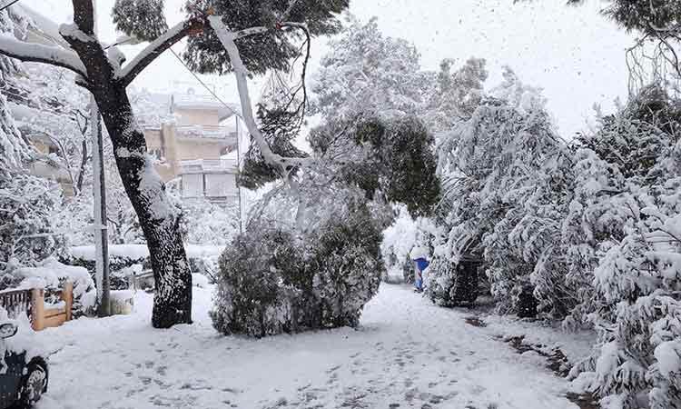Έκκληση Δήμου Χαλανδρίου στους πολίτες για παραμονή στο σπίτι