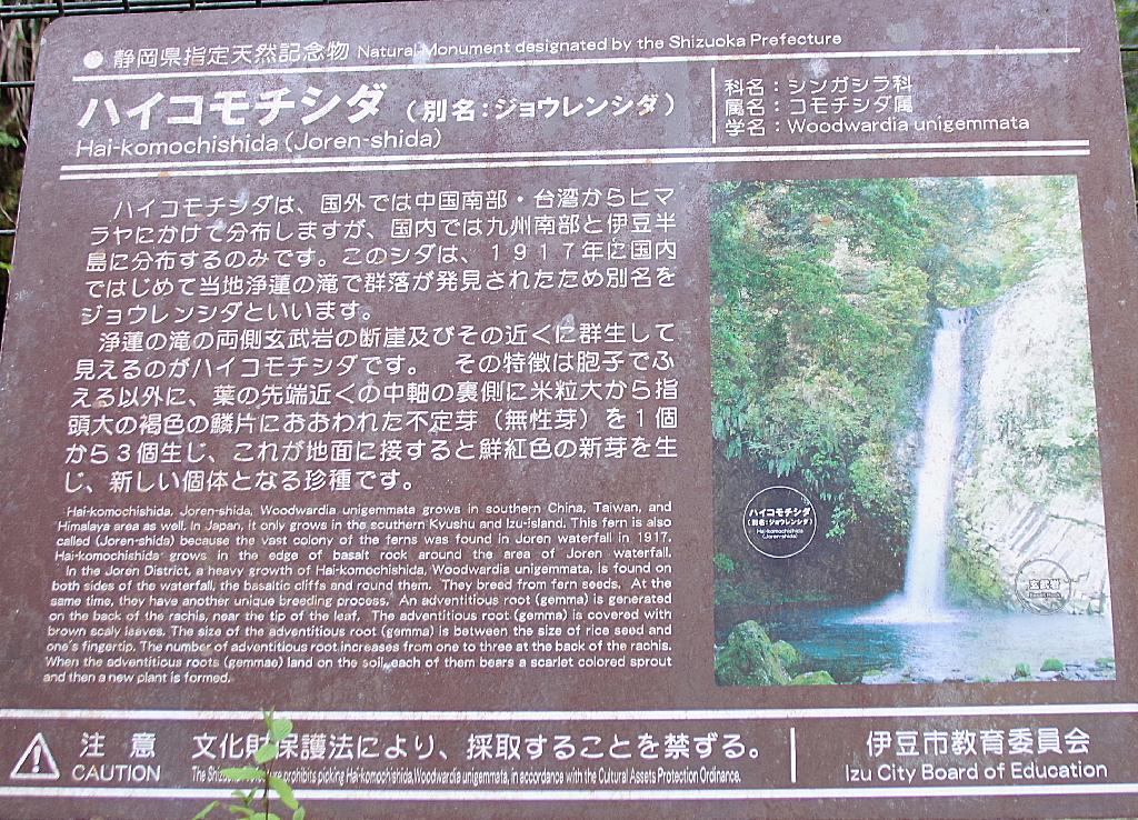 conv0008 2 - 浄蓮の滝