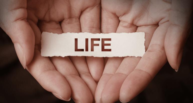 The Wheel of Life – La ruota della vita