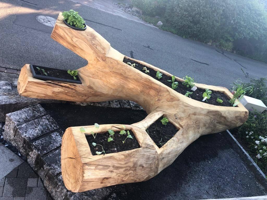 Planzen_Holzprodukt1