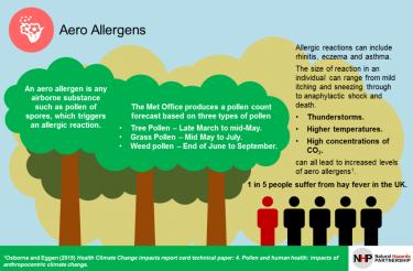 Aeroallergens and EoE