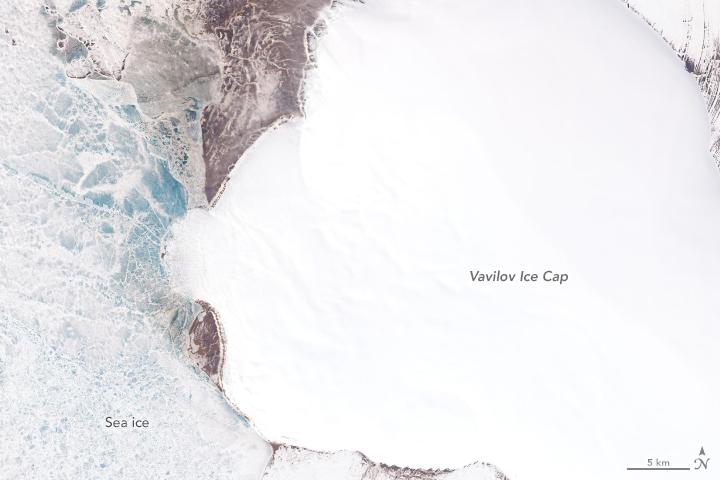 A Surprising Surge at Vavilov Ice Cap