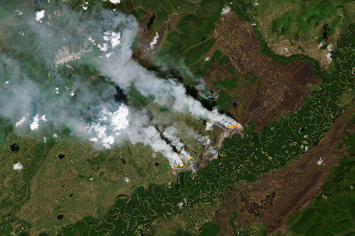 Overwintering Fires on the Rise