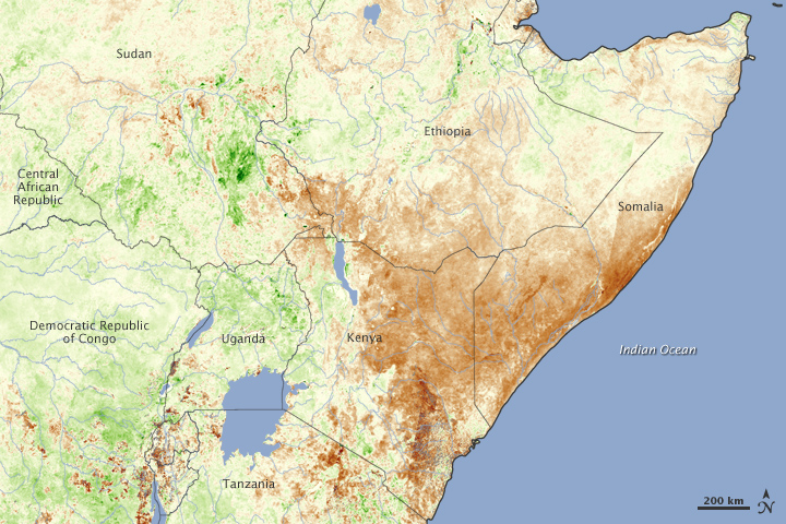 Drought in East Africa, Image taken in January 2010,