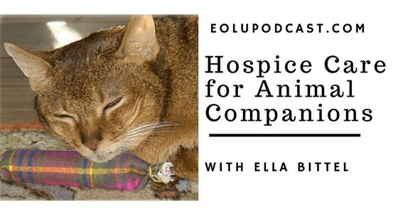 PodcastPetHospice