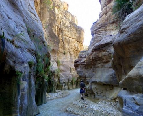 passaggio nel wadi Bin Hammad