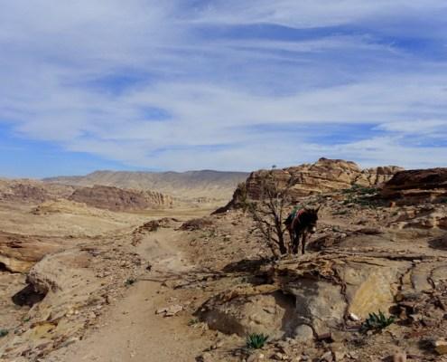 Panorama trekking da Little Petra
