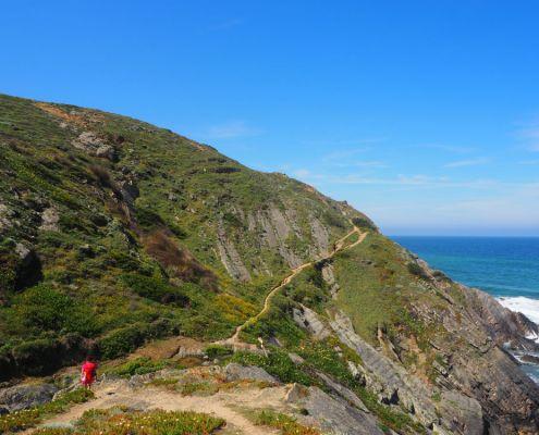 verde sentiero sull'Oceano