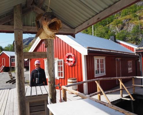 merluzzo appeso a Nusfjord