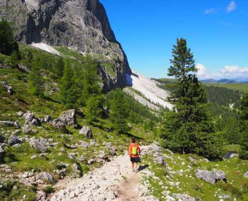 panorama Sentiero Sassolungo