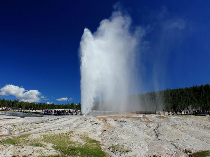 Yellowstone-National-Park-beehive-geyser