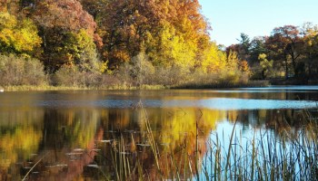 Ruddiman Lagoon, a small freshwater lake, joins Muskegon Lake, a freshwater estuary in Michigan.