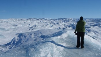 """A researcher looks over the Greenland ice cap, a """"frozen ocean."""""""