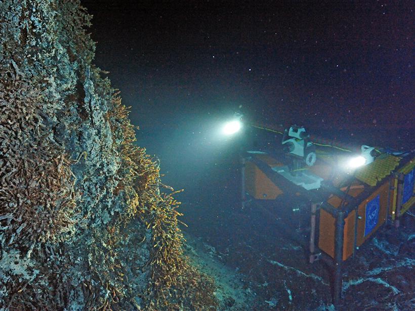 A new high-definition camera installed at a hydrothermal vent along the Juan de Fuca Ridge.