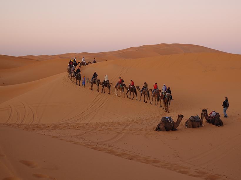 Climate change workshop delegates travel in Sahara Desert
