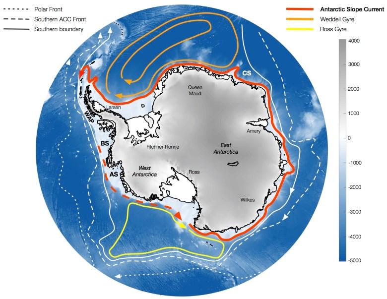 Oceanic circulation around Antarctica