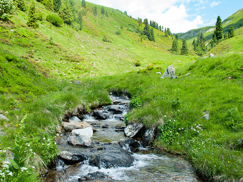 A stream flowing down a valley
