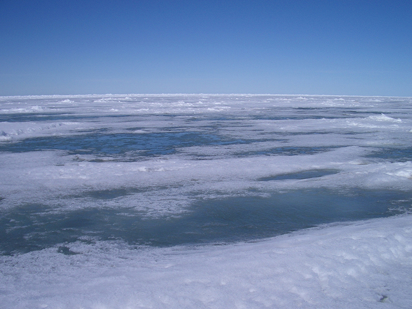 Arctic melt ponds on sea ice