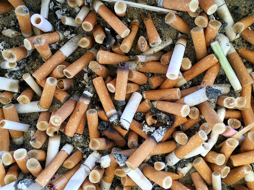 Photo of an array of cigarette butts