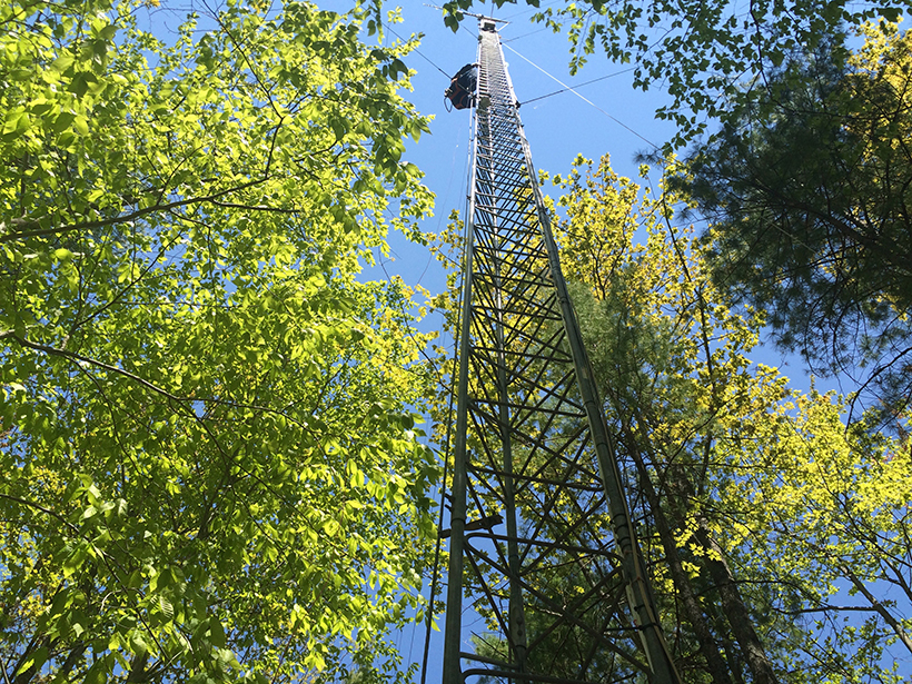 An instrument tower stands at the University of Michigan Biological Station, where researchers measured stable isotopic signals in water vapor amid two plots of forest.