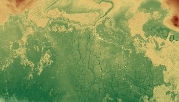 Digital elevation map of canals at ancient Maya site Belize