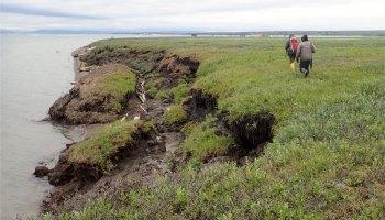 Researchers walk near the eroding shoreline on the southeast side of Qikiqtaruk (Herschel Island) off the coast of Yukon, Canada.