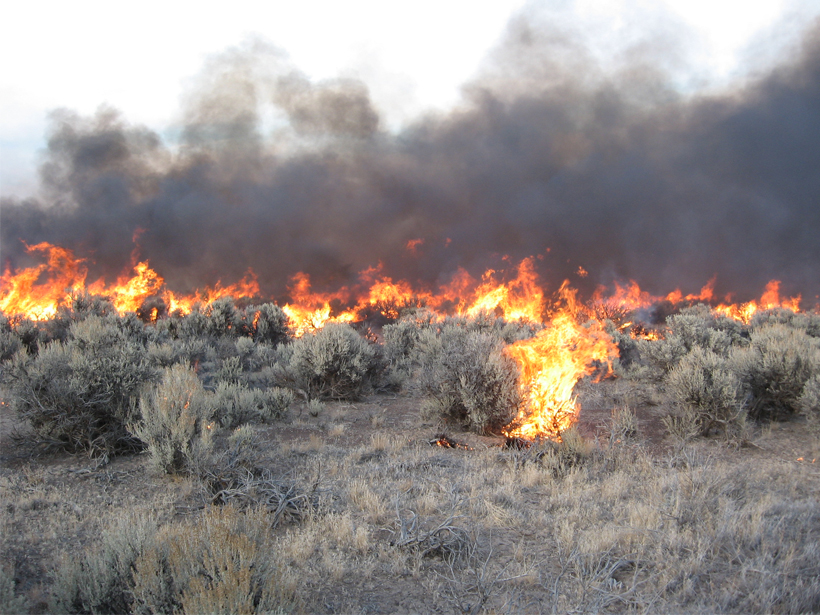 Controlled burn in a sagebrush ecosystem in Hart Mountain National Antelope Refuge in southeastern Oregon