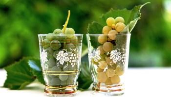 White wine grapes in small glasses