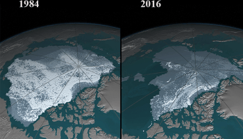 Image pair showing how Arctic sea ice diminished between 1984 and 2016