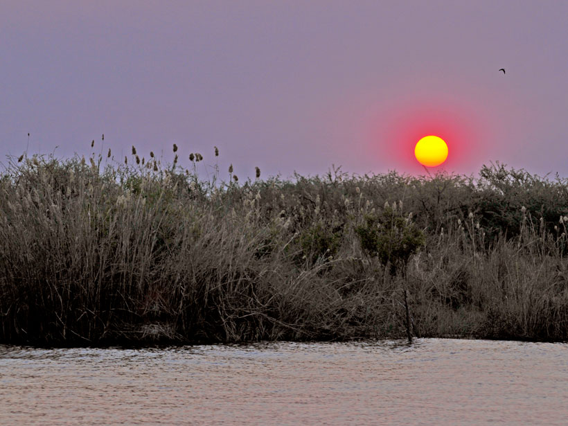 The Sun sets over the banks of the Chobe River.